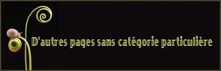 D'autres pages sans             cat�gorie particuli�re